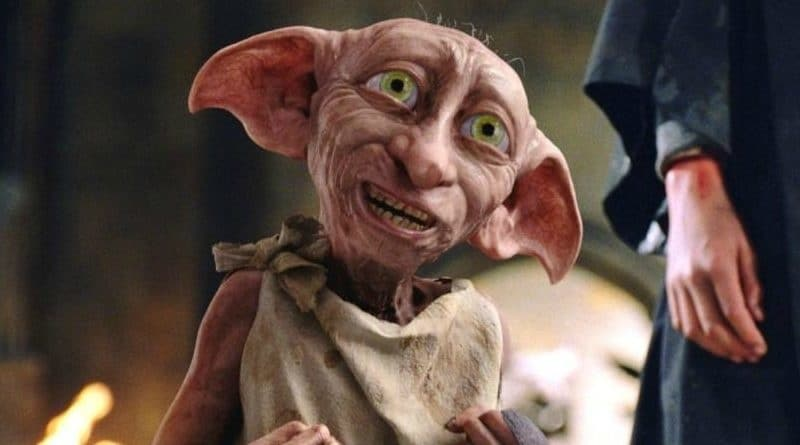 Harry Potter's Dobby Spotted on CCTV camera outside a woman's house