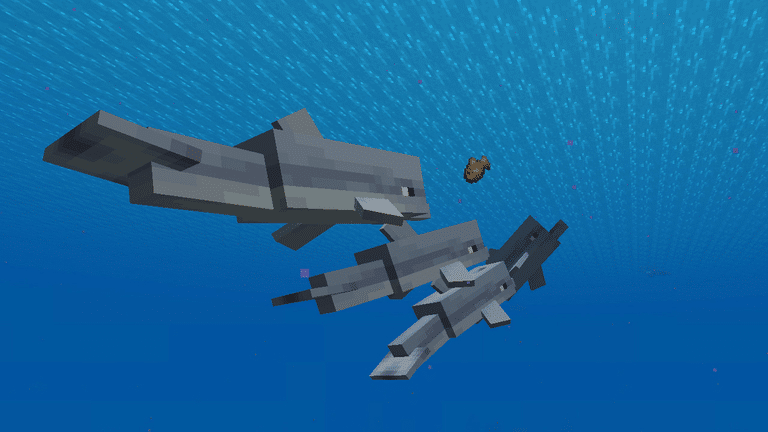 Dolphins chasing after raw cod in Minecraft